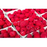 Raspberry - Raspberries